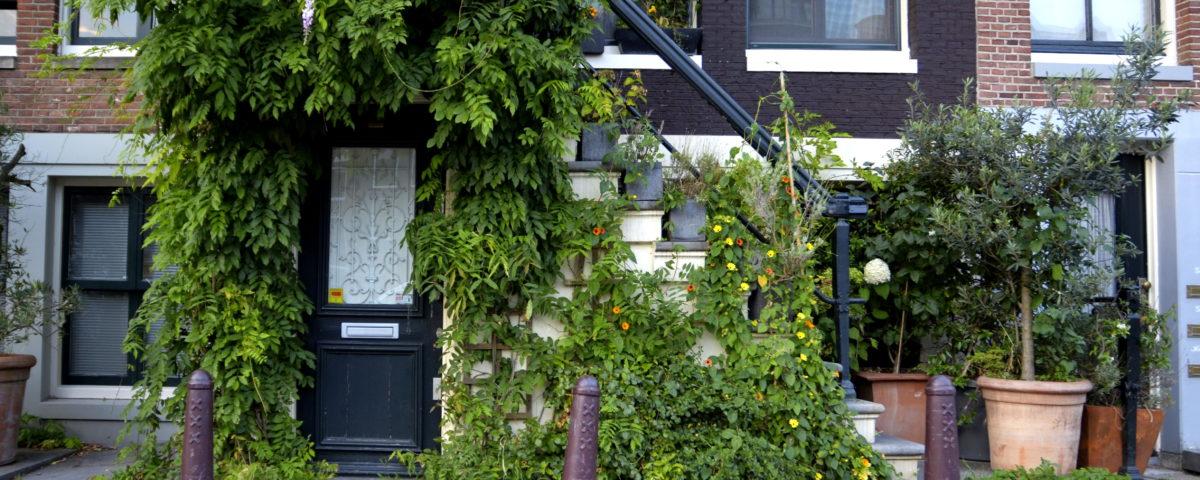 Stanze in affitto a Amsterdam