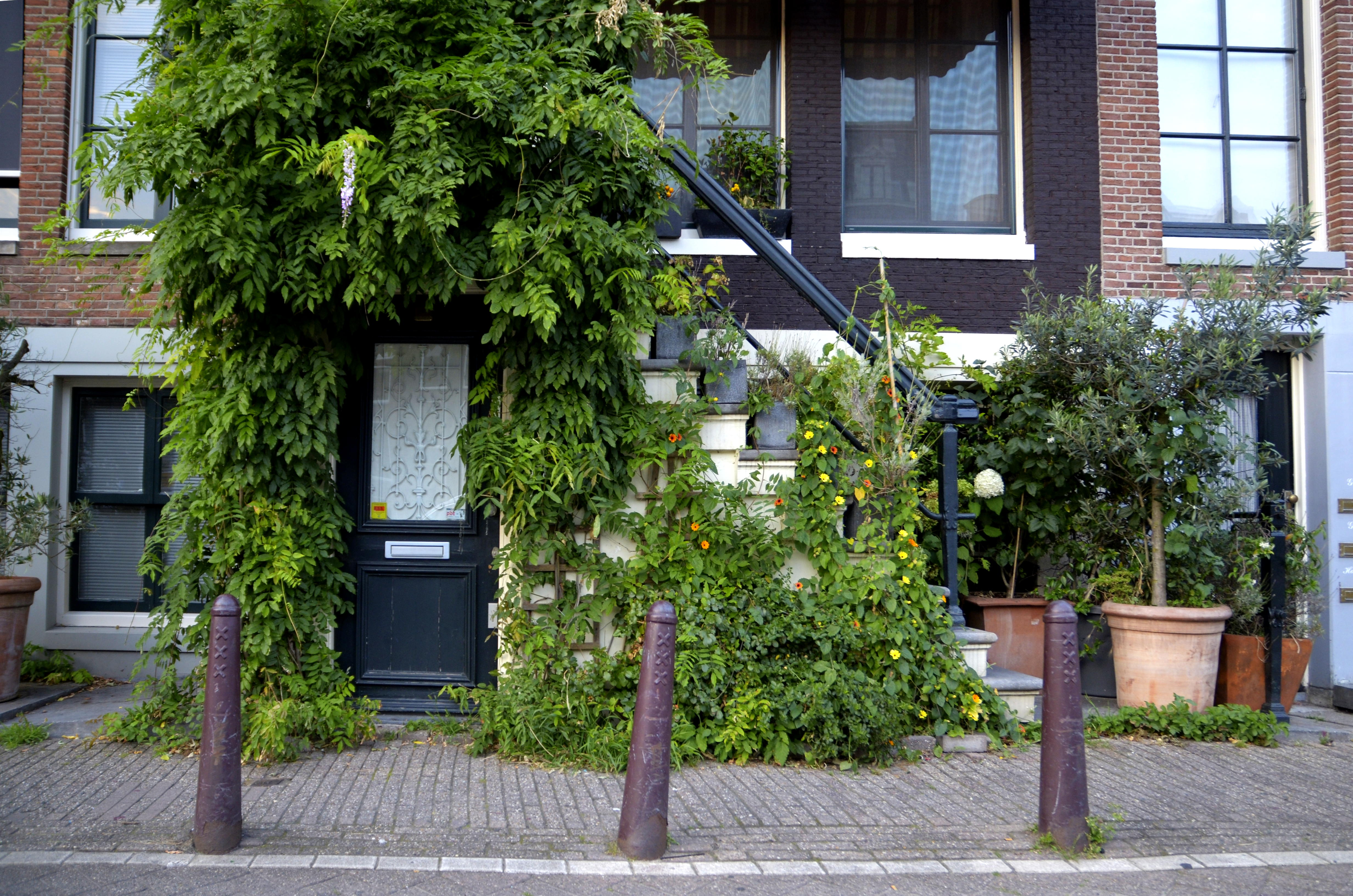 Come trovare una camera in affitto ad amsterdam for Case affitto amsterdam economici