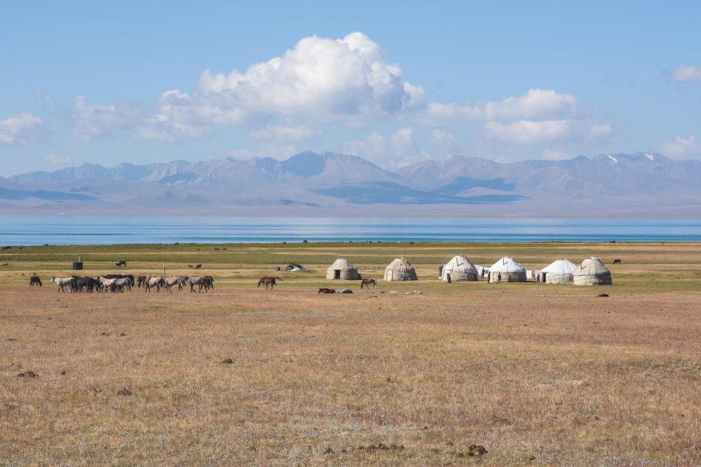 Campeggio in yurta a Song Kul, Kirghizistan.